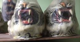 masque-de-tigre-1