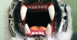 masque-de-tigre-10