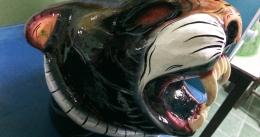 masque-de-tigre-3